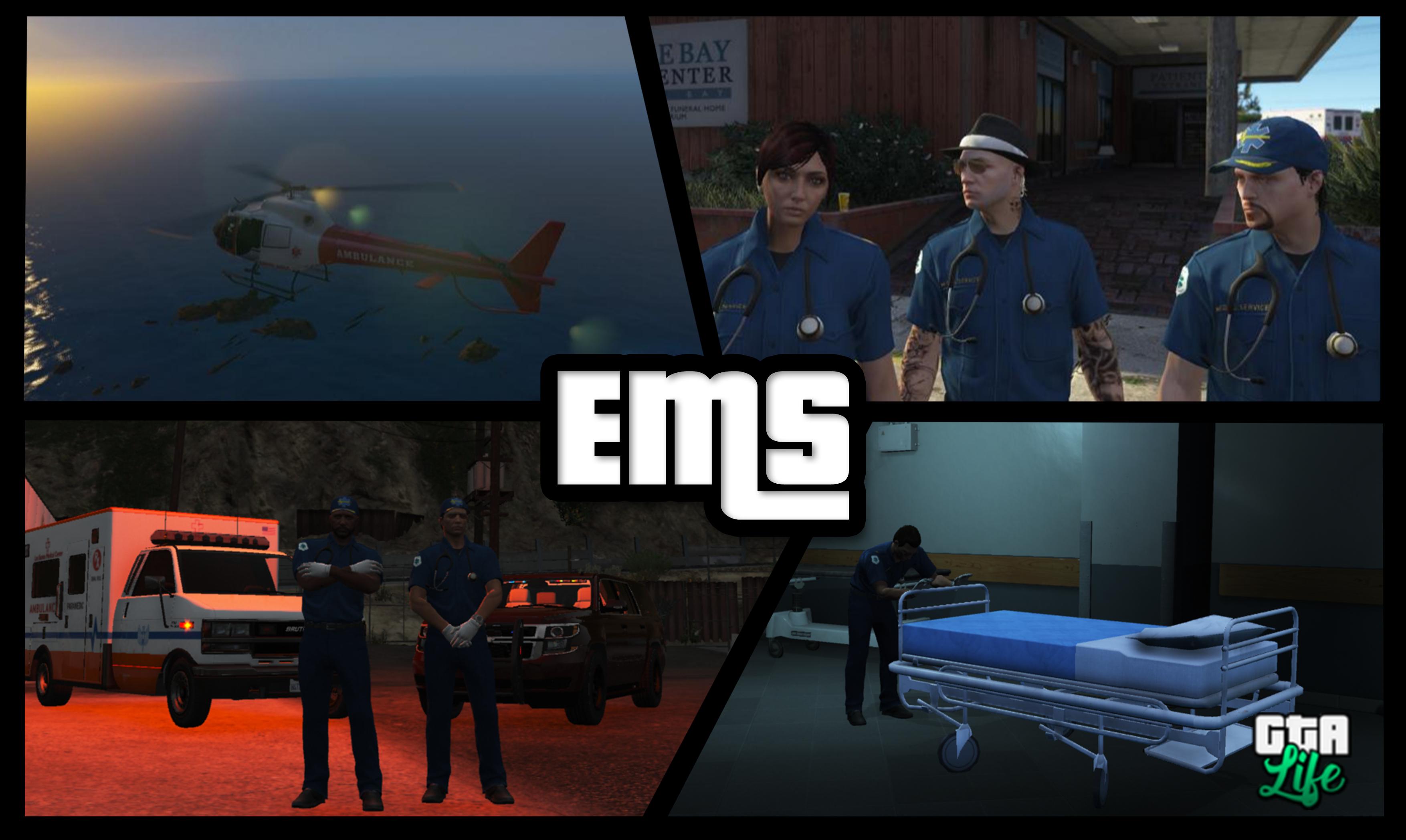 5b72ae4052569-EMS.png