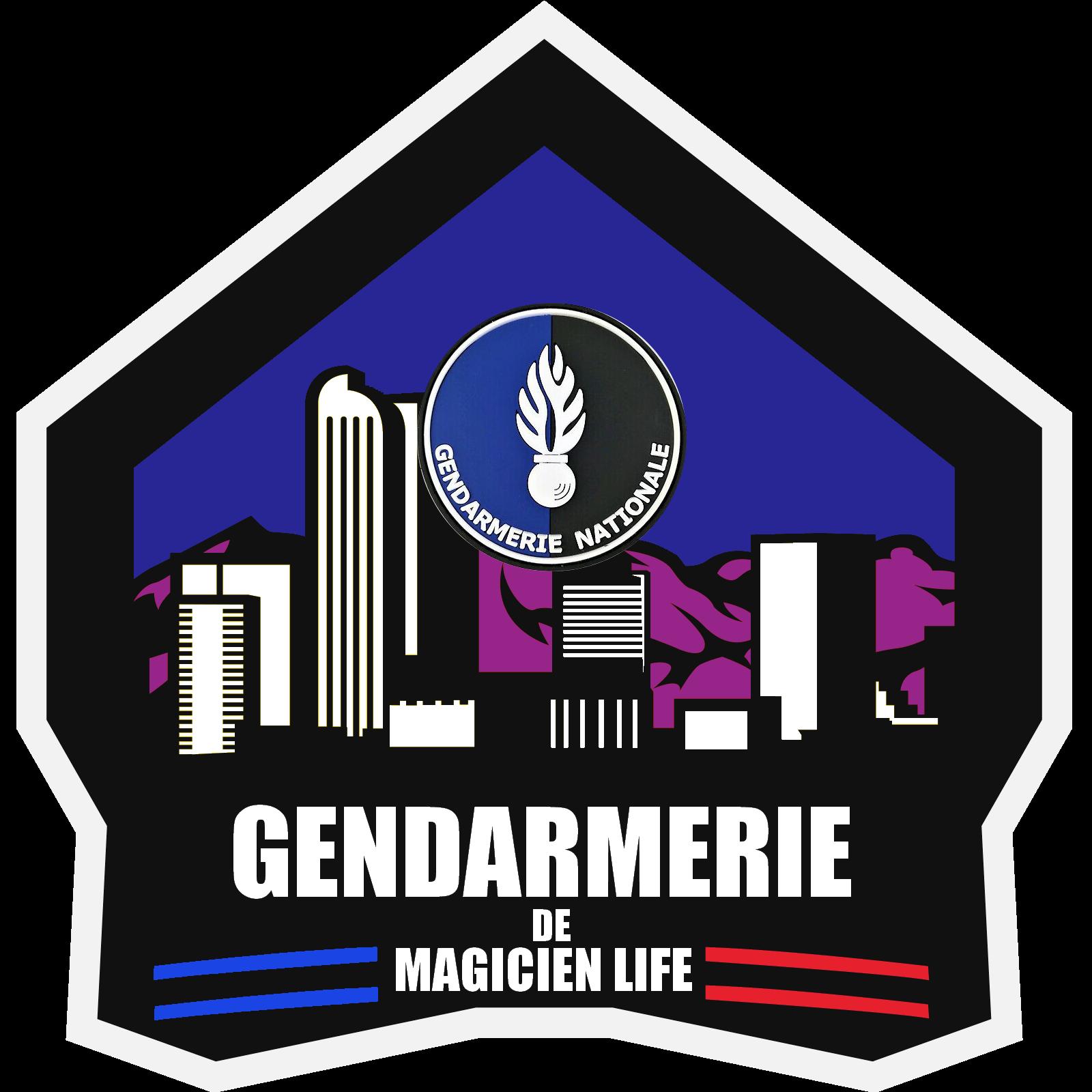 6070f74bdfc7c-Logo_The_magicien_Life_RP.png